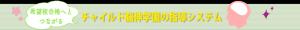 チャイルド脳伸夙川幼児教室指導システム