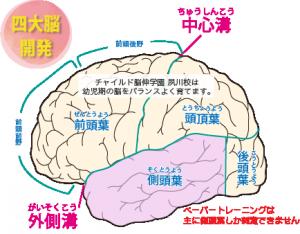 幼児期の脳開発 チャイルド脳伸学園夙川